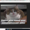 HousecatDaHousecat's avatar