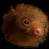 HQvoreryona's avatar