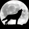 hungrylikethwolf203's avatar