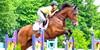 Hunter-Jumper-Riders's avatar