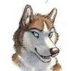 HuskyMotorsports's avatar