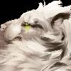 HyenaCrowley's avatar