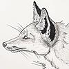 I-See-Shell's avatar