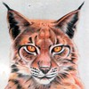 IamNoOneSpecial1's avatar