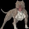 IBleaI's avatar