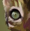 Iceity's avatar