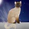 Iceshard77's avatar