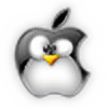 IceStorm2022's avatar