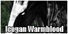IcoganWarmblood