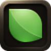icreativemarrakech's avatar