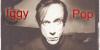 Iggy-Pop-Fans's avatar