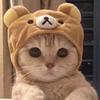 iiiKaedxn's avatar