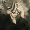 iiYw's avatar