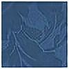 ikoshowa's avatar