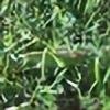 Illaris3's avatar