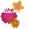illustrator-tutz's avatar