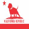 illuziveink's avatar