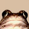 Ilopissa's avatar