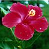 Ilora24's avatar