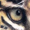 imaginARIart's avatar