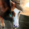 InfamousAnh's avatar