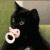 INFERNOVA67's avatar