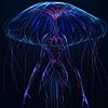 InfoInternet13's avatar