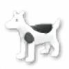insorama's avatar