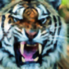 intercostal-archives's avatar