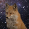 Interstellarfox's avatar