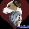 Iridescent24's avatar
