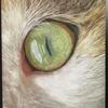 irismayra's avatar