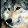 irunwithwolves's avatar