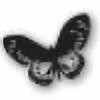 Isidora's avatar