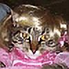 issarlk's avatar