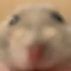ITAOHS's avatar