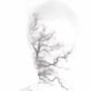 itsgonze's avatar