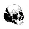 ItsMyFuckingProfile's avatar