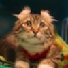 ivdrc's avatar