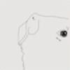 ivory-dog's avatar