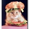 IWantToBeASandwich's avatar