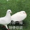 izayoisakuya945's avatar