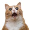 Izzy4626's avatar