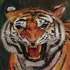 JalenCooper's avatar