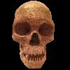 jamesf20's avatar