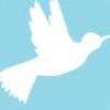 jas7229's avatar