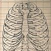 jasonseow's avatar