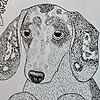 jaxdrawsstuff's avatar