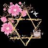 JayneDesign's avatar