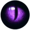 Jazefel's avatar